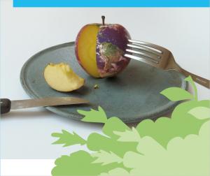 Ernährung-web