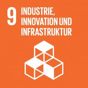 Ziel 9 Industrie, Innovation und Infrstruktur