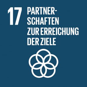 Ziel 17 Partnerschaften zur Erreichung der Ziele